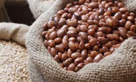How to Cook with Dry Beans