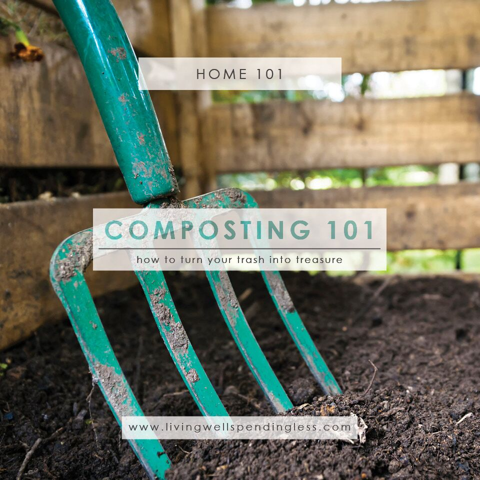 Composting 101 What Is Compost: How To Start Composting