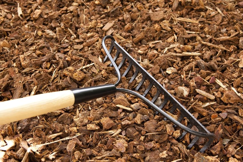Using mulch is a cheap landscaping idea to create a beautiful yard.