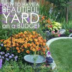 Think having a fancy yard is only for rich people? Think again! While you might not be able to afford a professional landscaper, there's no reason you can't still create an outdoor space you adore, and summer is the perfect time to start! Don't miss these great tips for how to have a beautiful yard on a budget!