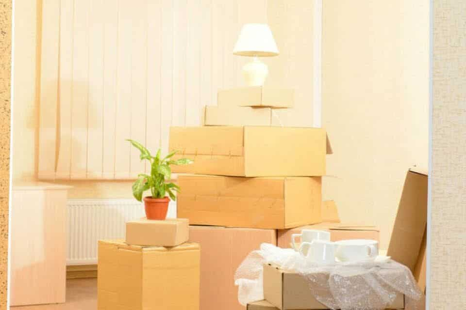 Everything You Need to Know about How to Plan a Big Move