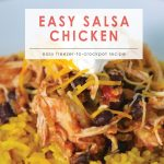 Easy Salsa Chicken | Food Made Simple | Freezer Cooking | Main Course Meat | Chicken Recipe | Simple Salsa Chicken Recipe