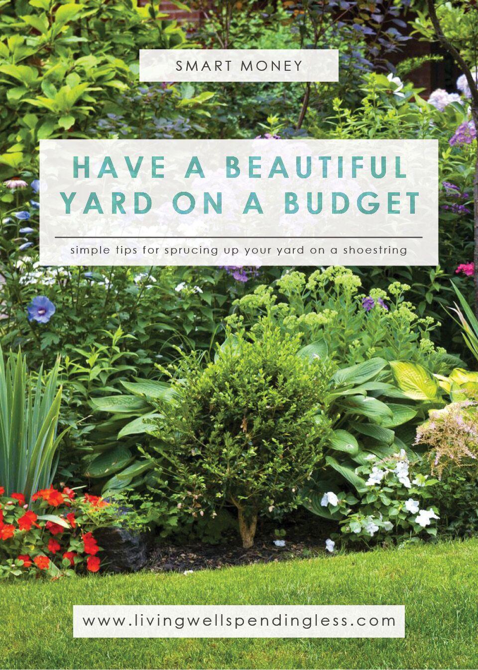Beautiful Yard on a Budget