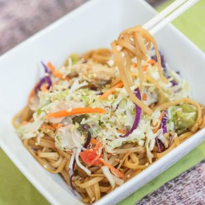 Chicken & Vegetable Noodle Bowl   Freezer Friendly Meals   Easy Chicken Recipes   Fast & Simple Chicken Dinner