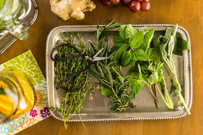Fresh herbs lying on a silver platter.