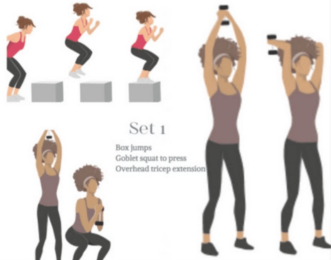 Set 1 of your quick workouts at home works your lower and upper body!