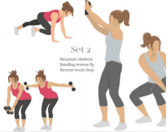 Set 2 of quick workouts at home works your whole body!