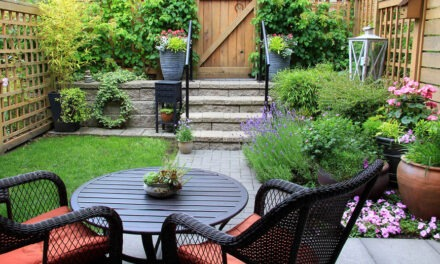 Simple Ways to Spruce Up Your Yard and Patio (Without Spending a Fortune)