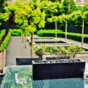 How to Clean Outdoor Surfaces   Cleaning Tips   Outdoor Cleaning Tips   Spring Cleaning for all Outdoor Surfaces