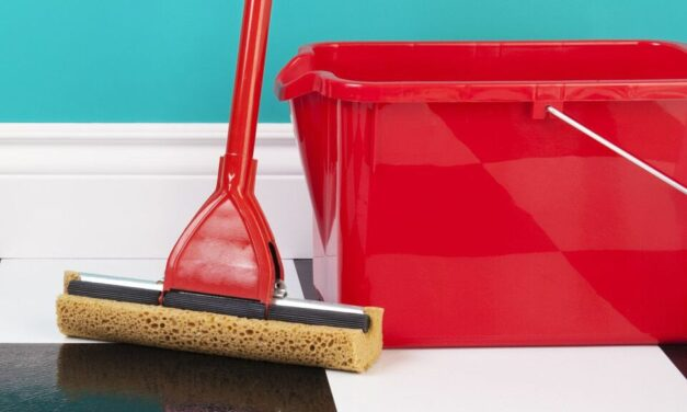 Everything You Need to Know About Spring Cleaning Your Kitchen