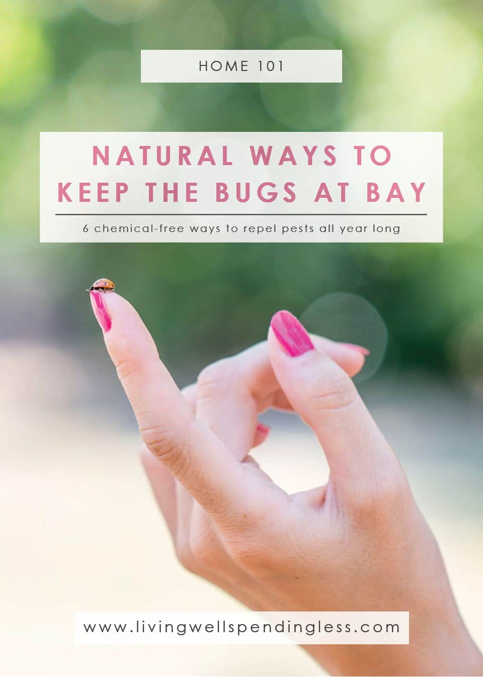 Natural Bug Repellant | Summer Tips | All Natural Solutions | Gardening Tips to Keep Bugs Away
