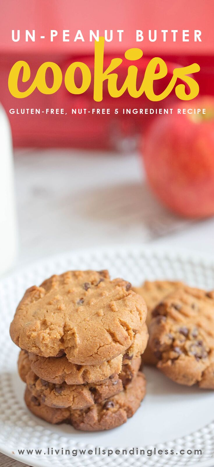 Gluten Free Nut Free Cookies | 5 Ingredient Cookies | Best After School Snack Food | Lunch Box Treats | Food Made Simple