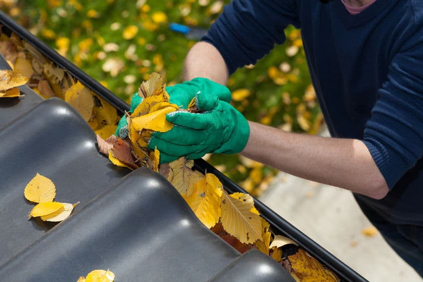 Man cleaning leaves out of his home's gutters.