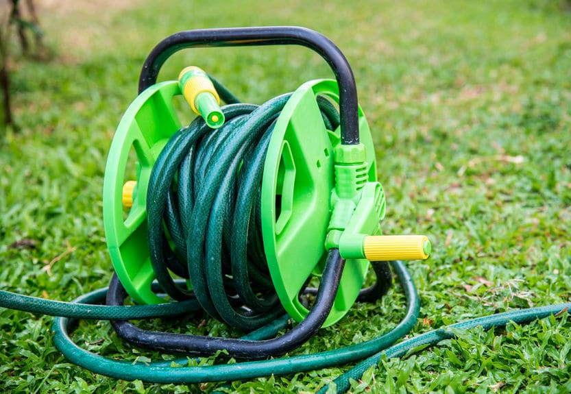 An outside hose rolled up on grass.