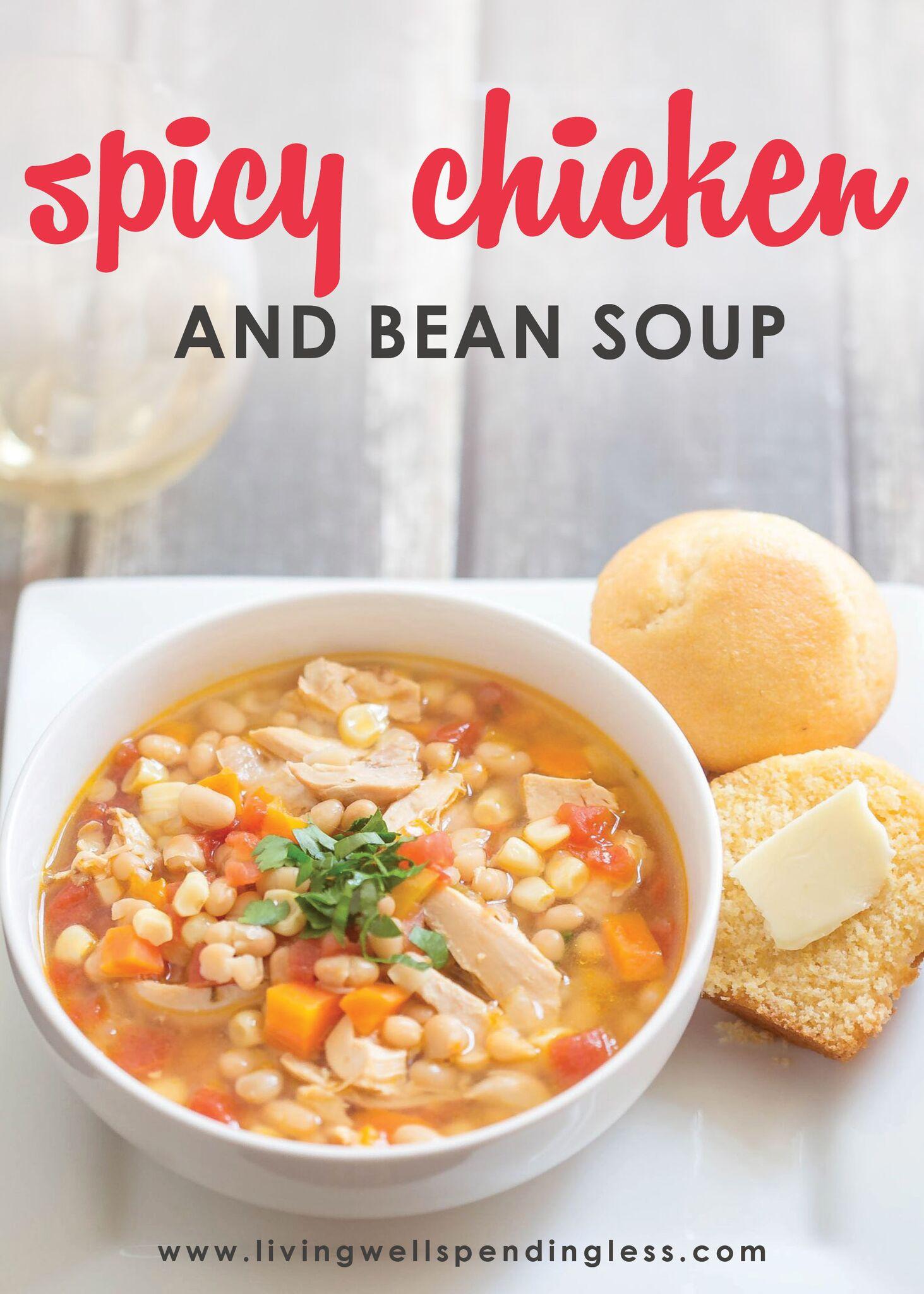 Spicy Chicken & Bean Soup