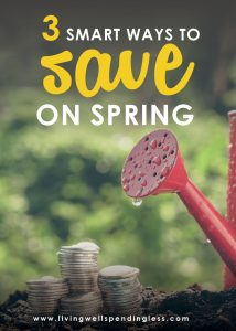 3 Smart Ways to Save on Spring | Save Money this Spring | Rein in your Spending | Smart Money | Money Tips
