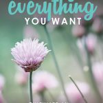 How to Have Everything You Want | How to Love Your Life | How to Have a Life You Love | Attitude of Gratitude