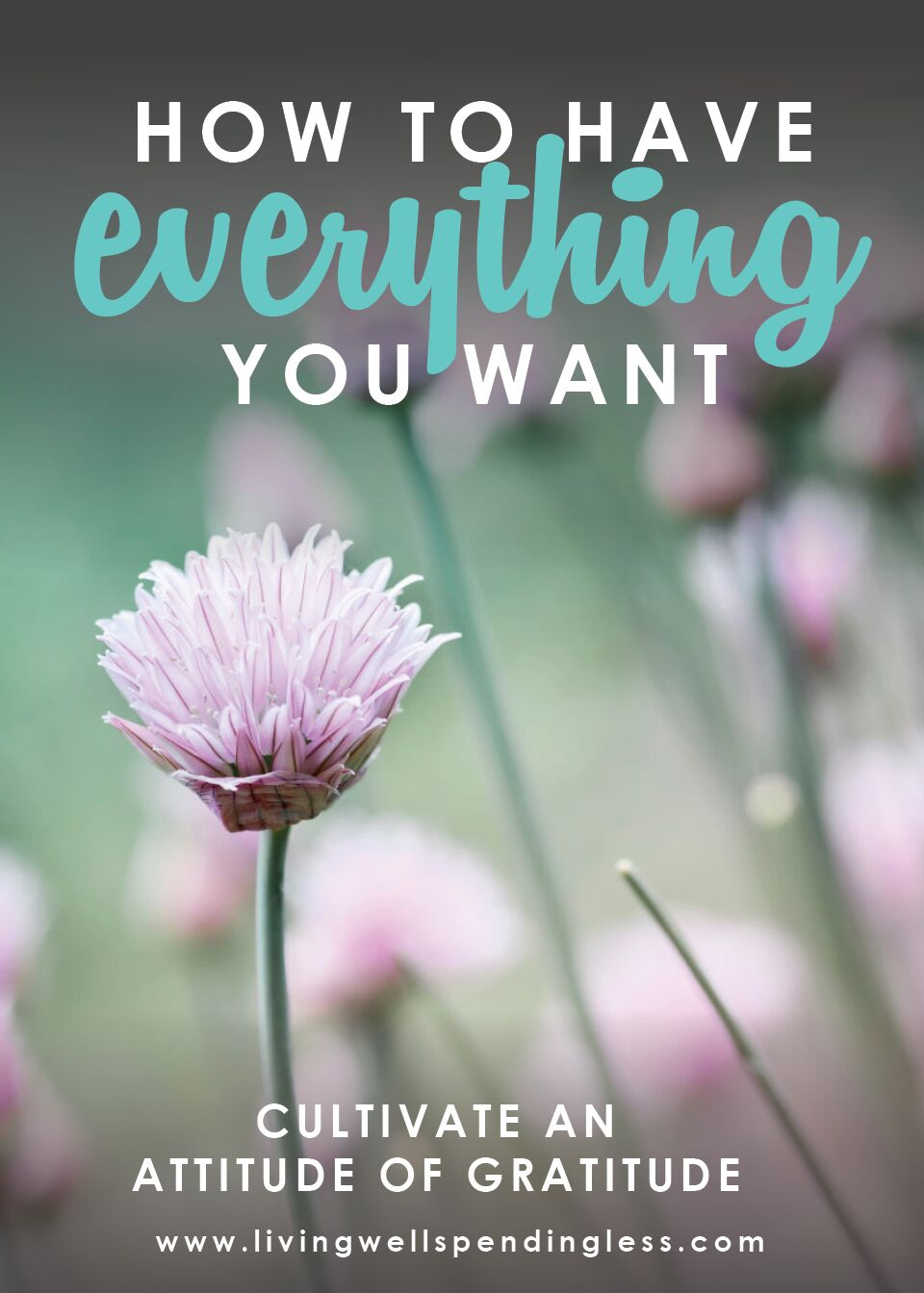 How to Have Everything You Want