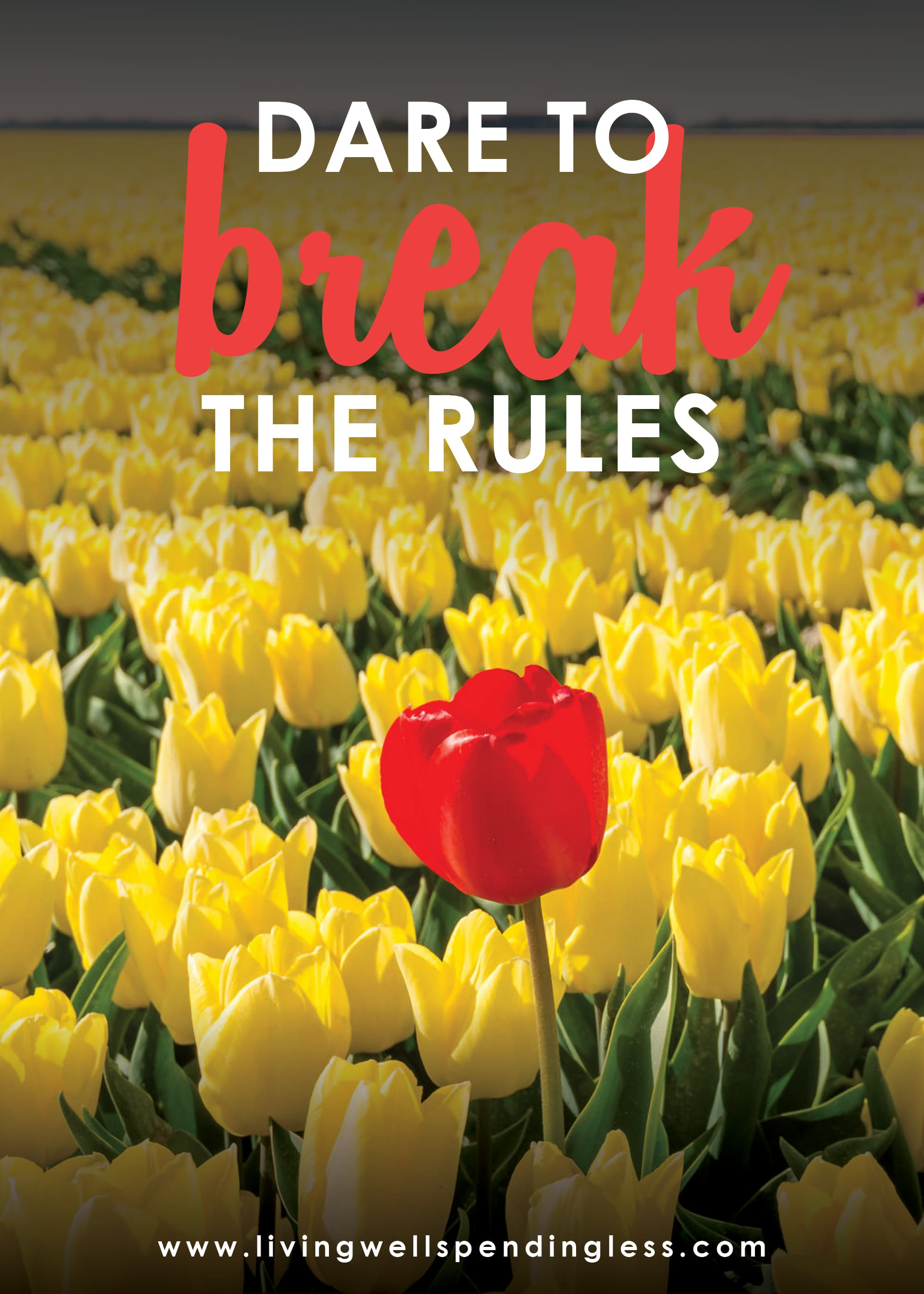 This week's podcast episode is all about daring to break the rules.