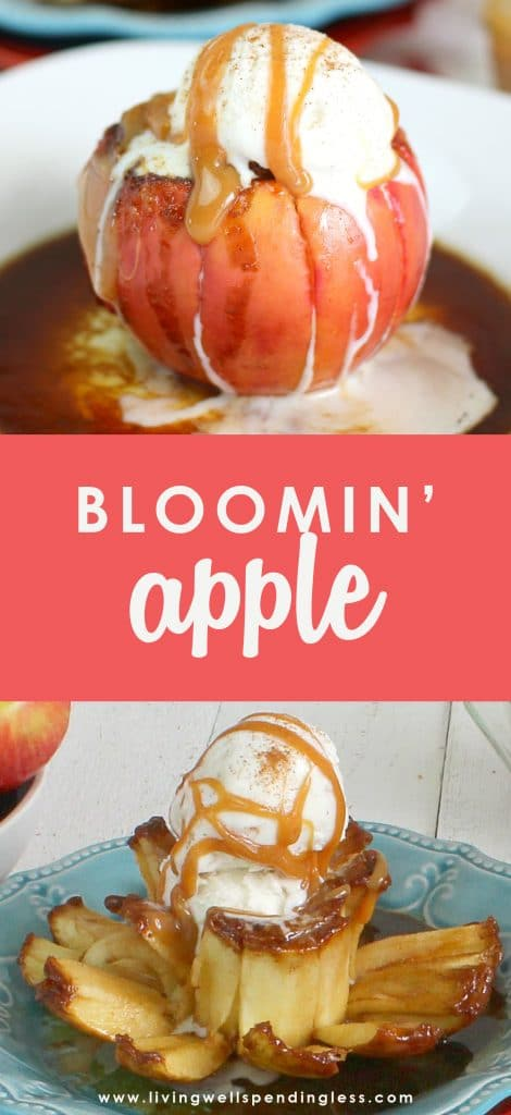 Looking for a last minute dessert recipe to wow your friends? This recipe may be new to you, but I'm sure we're all familiar with blooming onions from a popular restaurant in most of our towns. This Bloomin' Apple recipe is basically the same concept and uses just 5 delicious ingredients and very little effort!