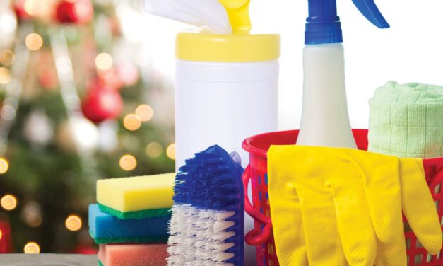 Ho Ho HELP!  How to Speed Clean this Holiday Season (Even if You Have to Cheat Just a Little)