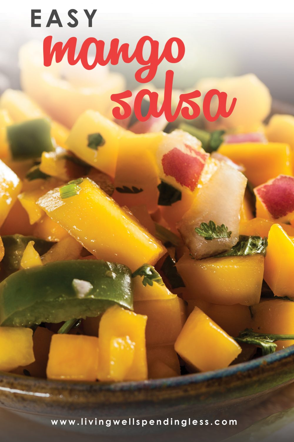 Looking to liven up dinner? This Easy Mango Salsa only has four ingredients, is quick and adds a burst of flavor to main dishes. Or just serve with chips!