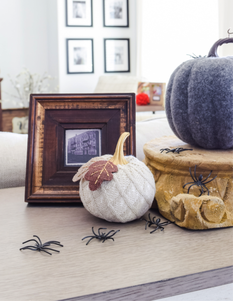 Add some spooky fun to your home with these plastic spiders.