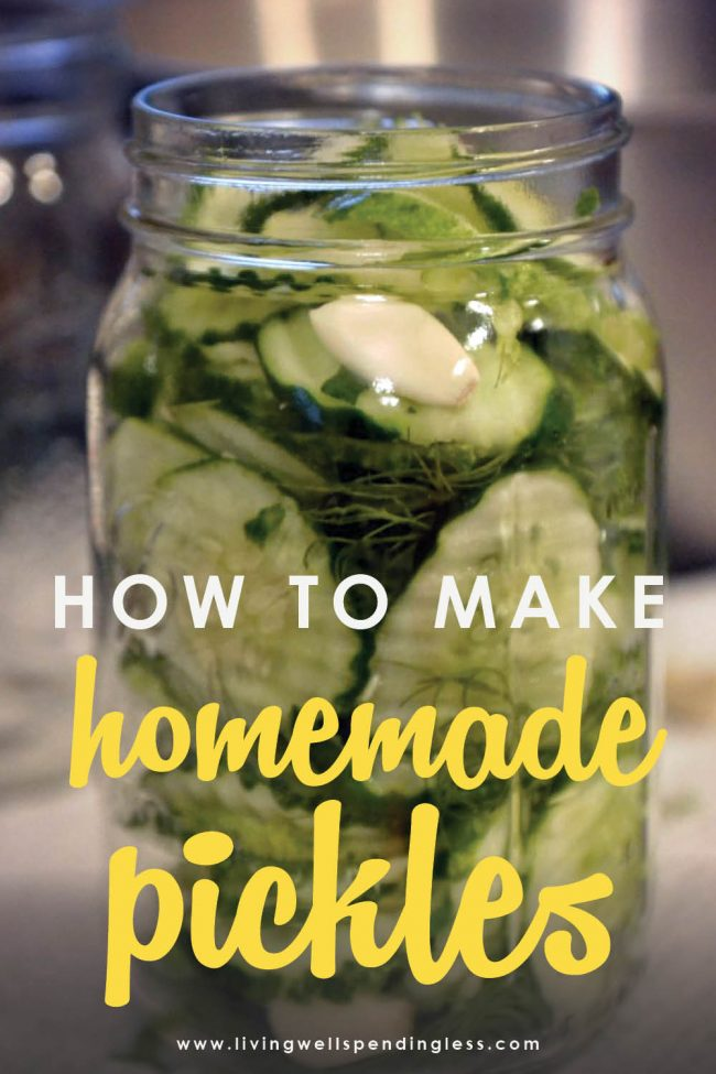 Looking to make homemade pickles? This awesome step-by-step tutorial is SO easy to follow, even if you've never made them before!