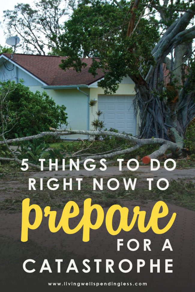 Would you be ready if disaster struck? Don't miss these five simple steps to prepare for a catastrophe or emergency....just in case. #survivaltips #catastrophe #survival101